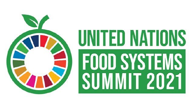 ONU debate Sistemas Alimentares